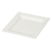 8 inch square plate.png