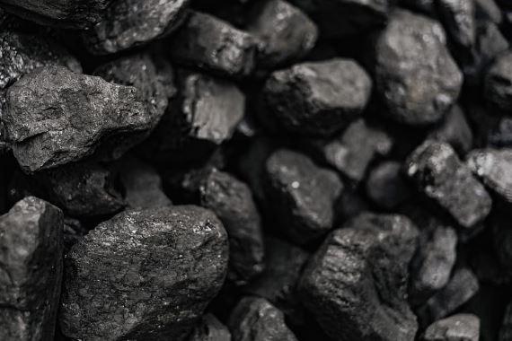 الفحم الحجري، كيف يتكون؟