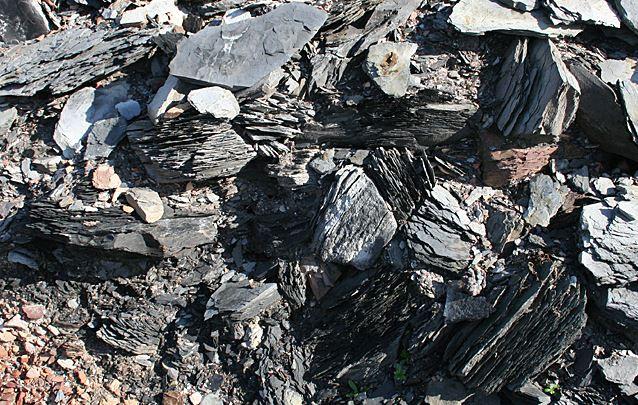 صخر نفطي
