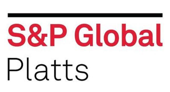 شعار شركة بلاتس