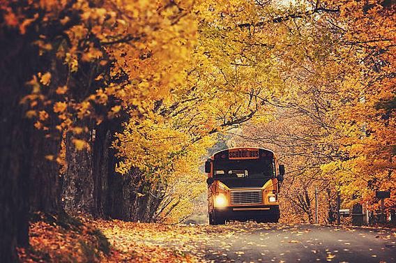 istockphoto-school bus in fall setting.jpg