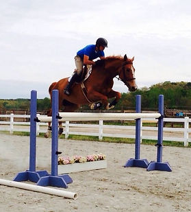 hunters jumpers barn in charlotte, english riding lessons