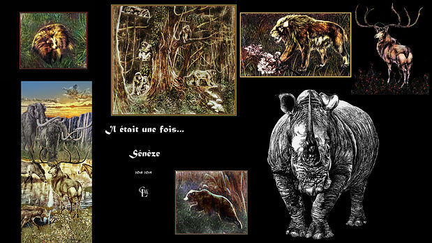 Sénèze couverture album 2918-19