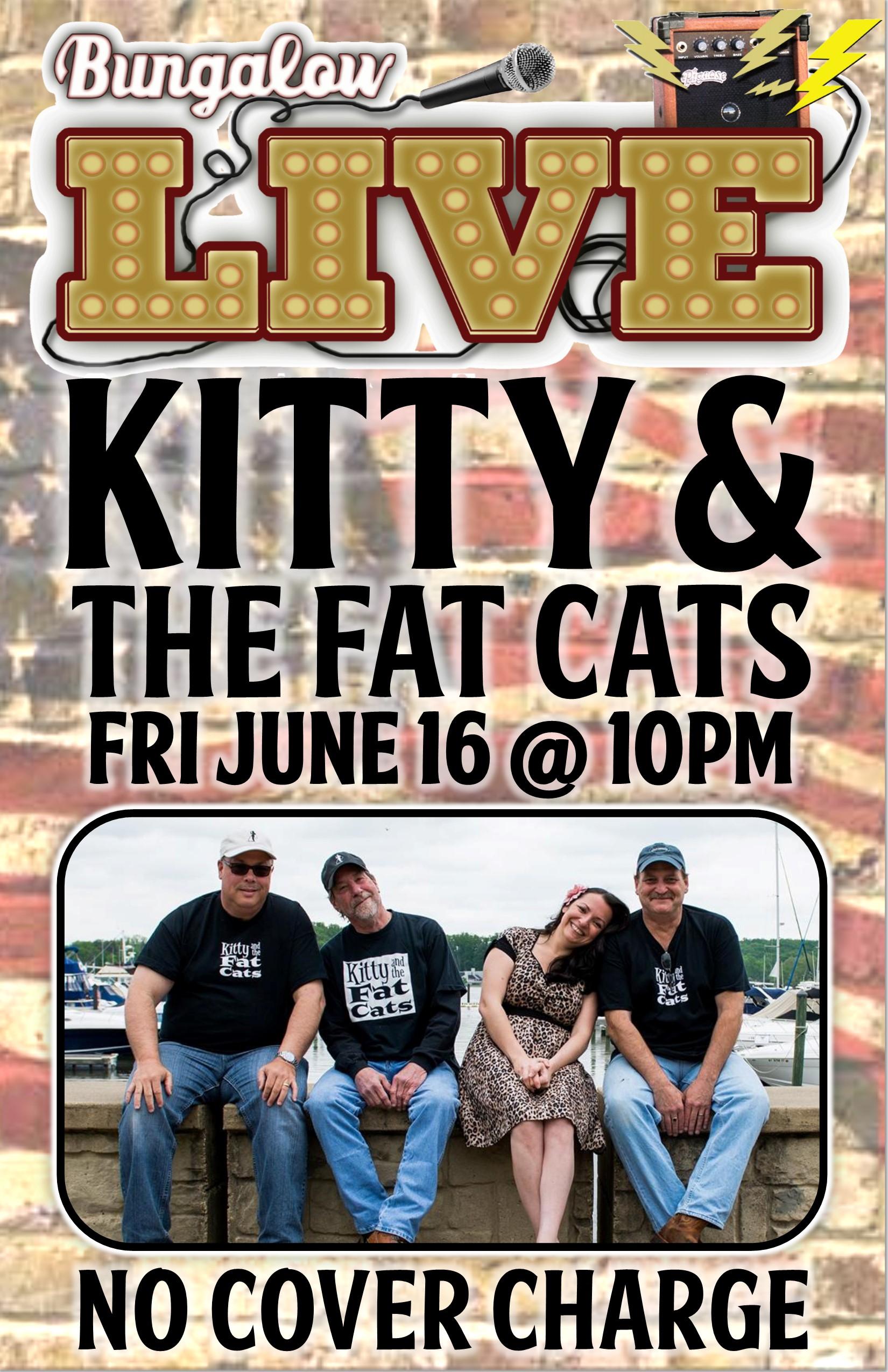 kitty fat cats
