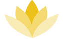 WCMD_Logo_W_Transparent_Background_edite