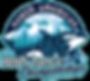 naidc19-logo.png