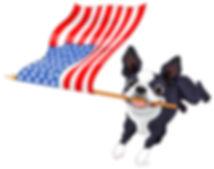 15_boston_terr_run_flag004.jpg