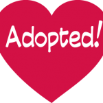 Adopted Heart.png