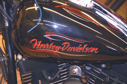 Harley tank lettering