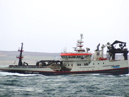 Asbjørn liðugur við svartkjaftakvotuna