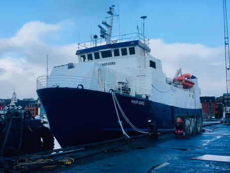 1. stýrimaður til Hasfjord