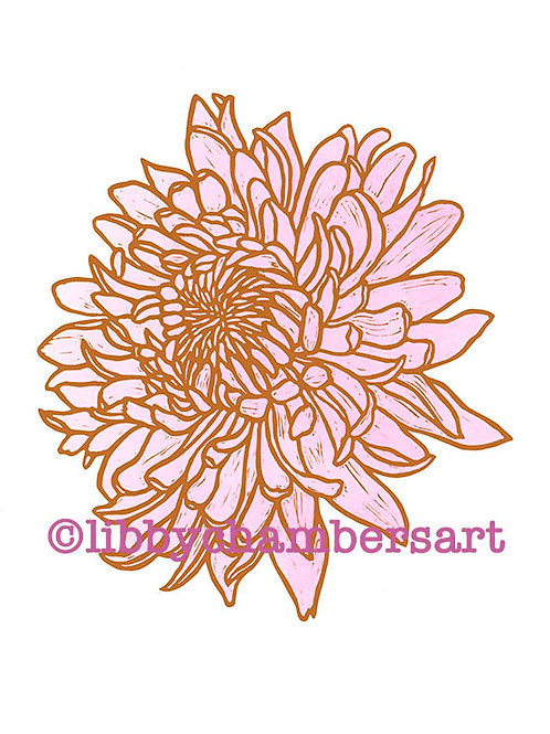 Pink and Burnt Sienna Dahlia