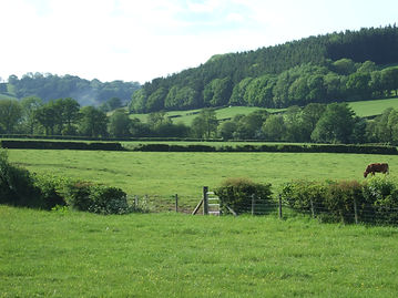 Meadows and hills viewed from the cottage