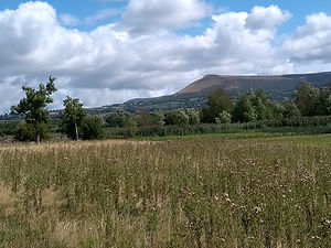 Mynydd Troed and the Black Mountains.