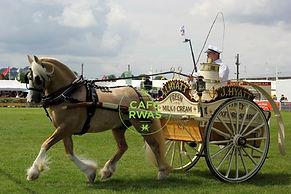 Royal Welsh Shire Horse.jpg