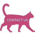 Cat - Contact Us (Pink).png