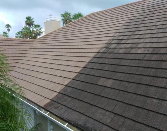 soft wash roof.JPG