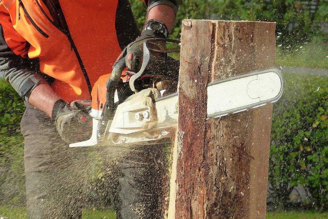 chain.saw.jpg