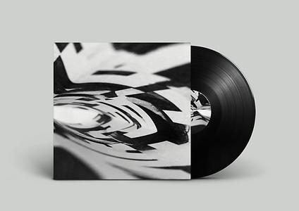 Vinyl Sleeve Mock up 2_.png