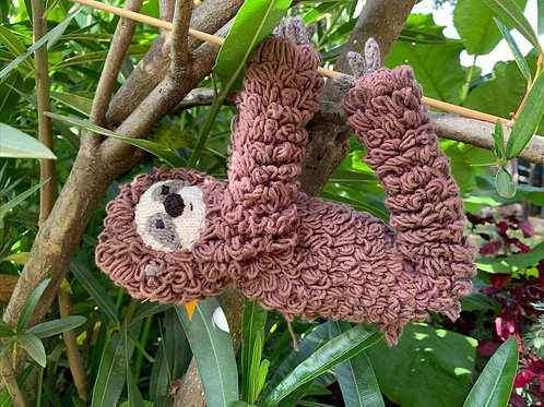 Willow the Sloth