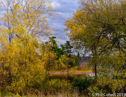 Fall in the Ottawa River Valley