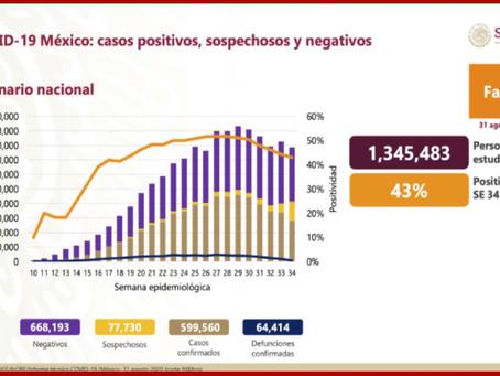 Suma México 64 mil 414 muertes por coronavirus
