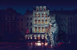 Cartier/photos Mert&Marcus
