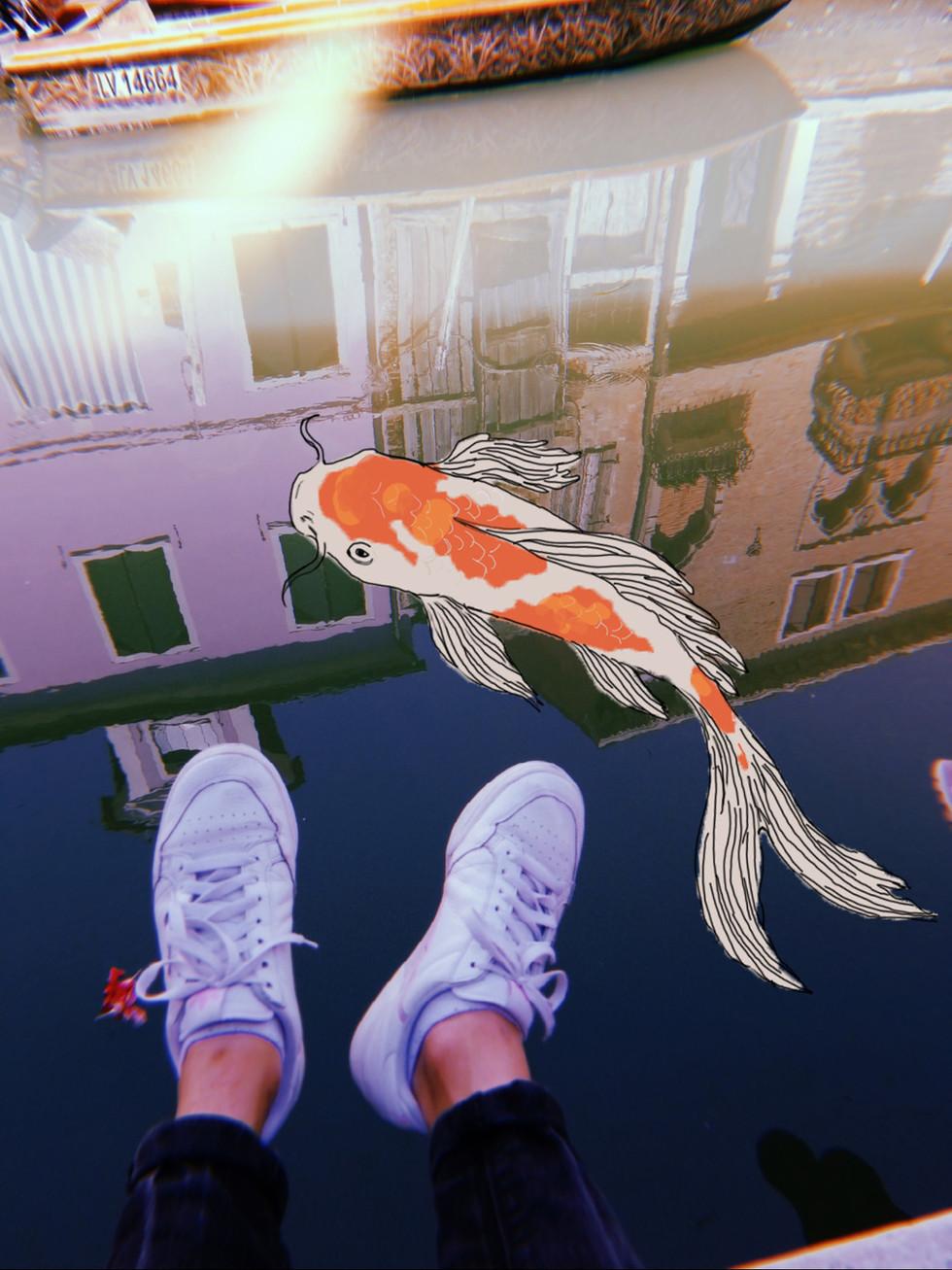 fishh.jpg