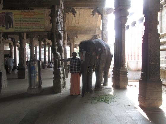 Le_monument_et_l'éléphant.jpg