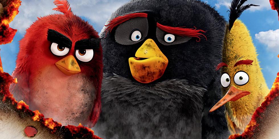 MOVIE NIGHT  - Angry Birds