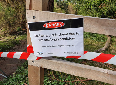 All MTB trails at Lysterfield are CLOSED.