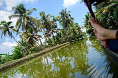 India Kerala.jpeg