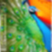 Cover_LoveJuly2LQ.jpg