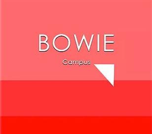 bowie squareJ2.jpg