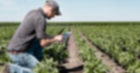 pgconteudopratico-agronegocio-redes-soci
