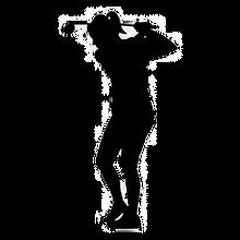 Silhouette%20-%20Golf%20IMAGE%202_edited