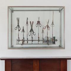 The Symphoney of Scissors