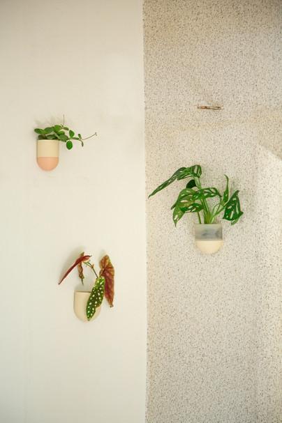 plantárium | Nástěnný květník