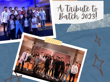 Juniors' Journey: A Tribute to Batch 2023
