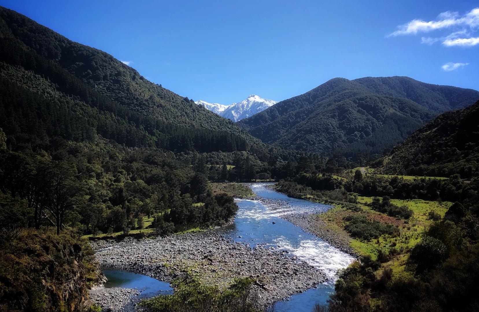 Tararua Forest Park