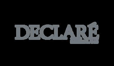 Declare_Logo.png