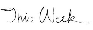 This Week in Wesley (11.27 - 12.3)