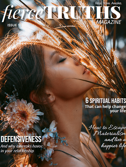 Issueelevencover.png