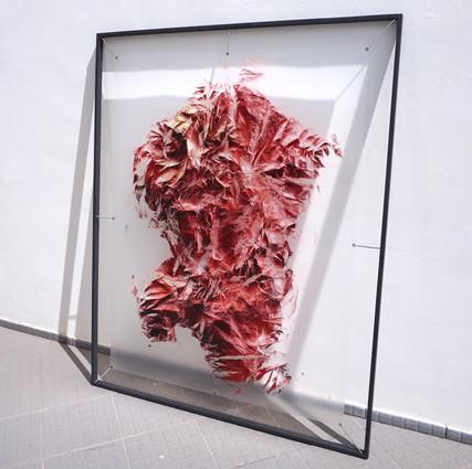 Relieves efimeros - Rojo carne Spray sobre polietileno y vinilo 160 x 130 cm
