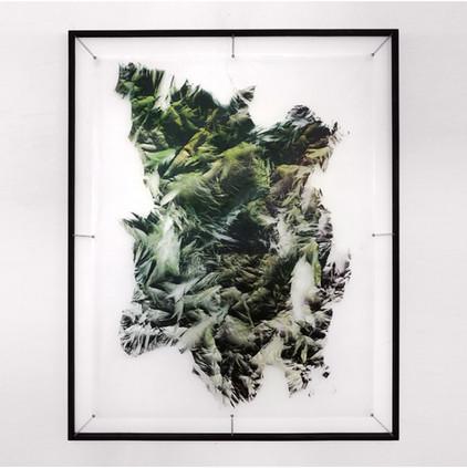 Relieves efimeros - Verde Spray sobre polietileno y vinilo 160 x 130 cm