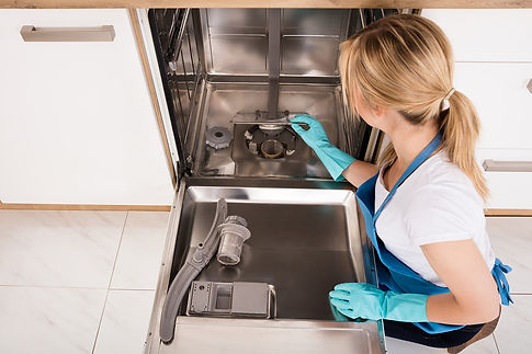 Dishwasher Leaks and Malfunctions