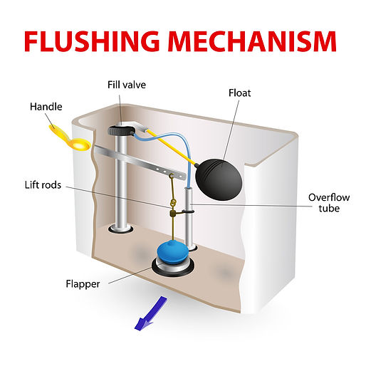 toilet clog causes flushing mechanism
