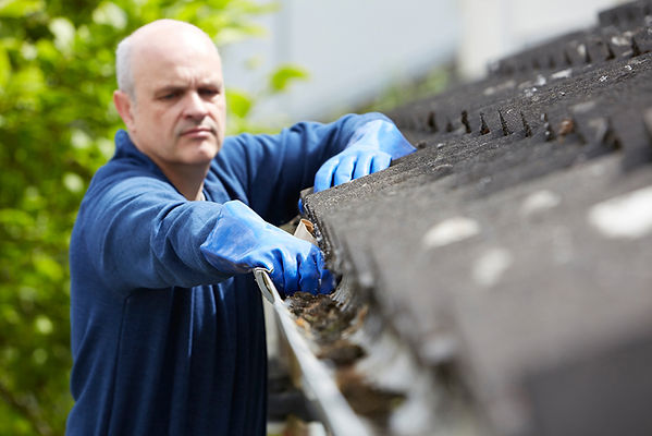 drain relining roof