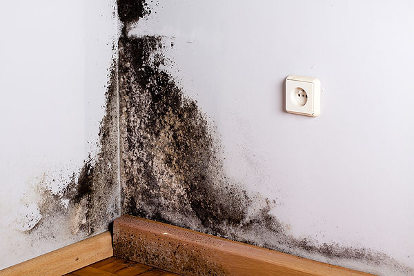 Health Issues Caused By Pipe Leaks Mold