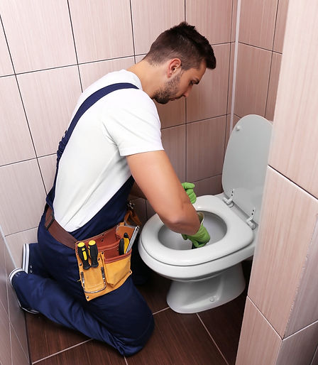 toilet clog causes toilet repair